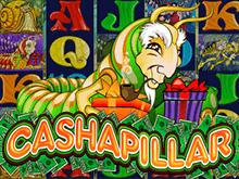Игровой аппарат Cashapillar